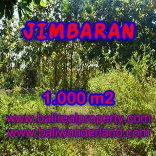 JUAL TANAH MURAH di JIMBARAN BALI 10 Are di Jimbaran Ungasan