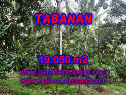 Murah ! Tanah di TABANAN Bali Dijual TJTB092