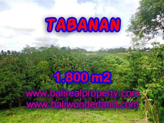 TANAH DIJUAL DI BALI, MURAH DI TABANAN RP 280.000 / M2 - TJTB088 - INVESTASI PROPERTY DI BALI