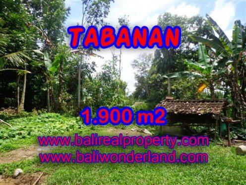 MURAH ! DIJUAL TANAH DI TABANAN TJTB091 - PELUANG INVESTASI PROPERTY DI BALI