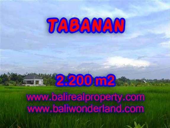 MURAH ! DIJUAL TANAH DI TABANAN TJTB097 - PELUANG INVESTASI PROPERTY DI BALI