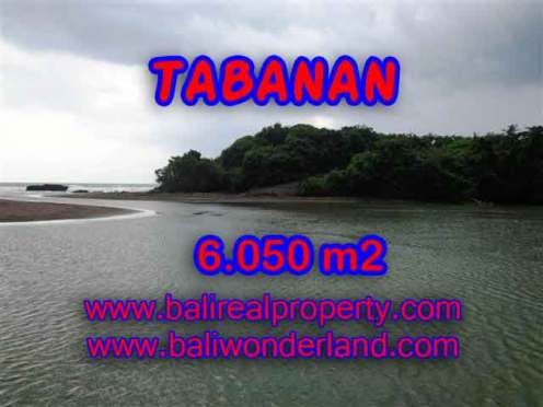 Murah ! Tanah di TABANAN Bali Dijual TJTB098