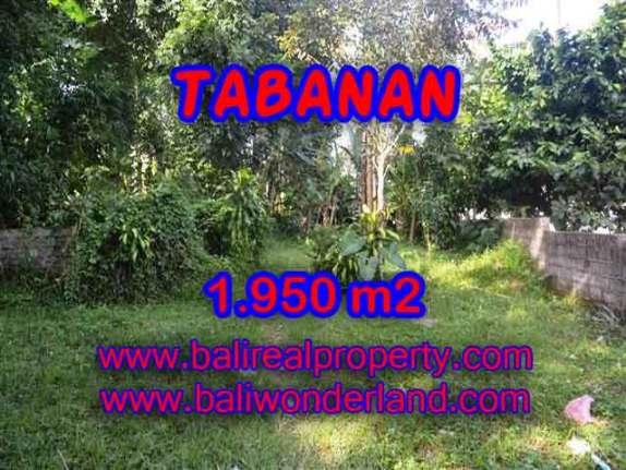 TANAH MURAH DI TABANAN BALI DIJUAL TJTB130 - INVESTASI PROPERTY DI BALI