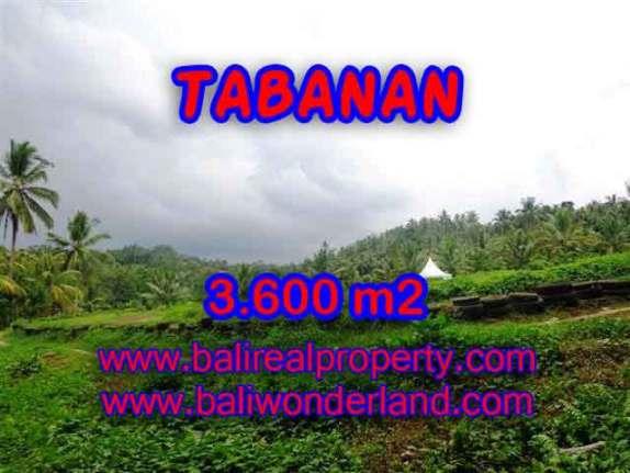 TANAH DI TABANAN MURAH DIJUAL TJTB117 - KESEMPATAN INVESTASI PROPERTY DI BALI
