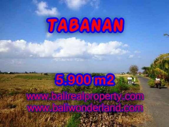 INVESTASI PROPERTI DI BALI - TANAH MURAH DI TABANAN DIJUAL CUMA RP 750.000 / M2