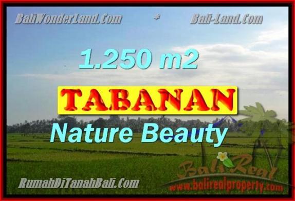 Peluang Investasi Properti di Bali - Jual Tanah murah di TABANAN TJTB148