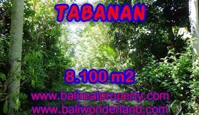 INVESTASI PROPERTI DI BALI - MURAH ! TANAH DIJUAL DI TABANAN TJTB113