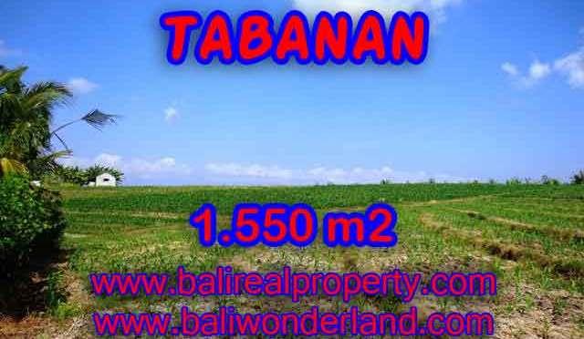 JUAL TANAH DI TABANAN BALI MURAH TJTB134