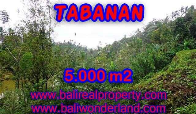 JUAL TANAH DI TABANAN RP 270.000 / M2 - TJTB139