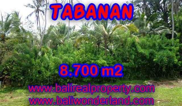 Tanah di TABANAN Bali Dijual murah TJTB115 - investasi property di Bali