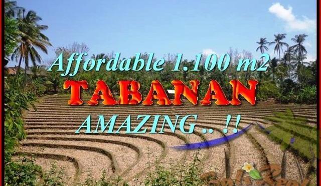 TANAH JUAL MURAH TABANAN 11 Are View kebun dan sawah