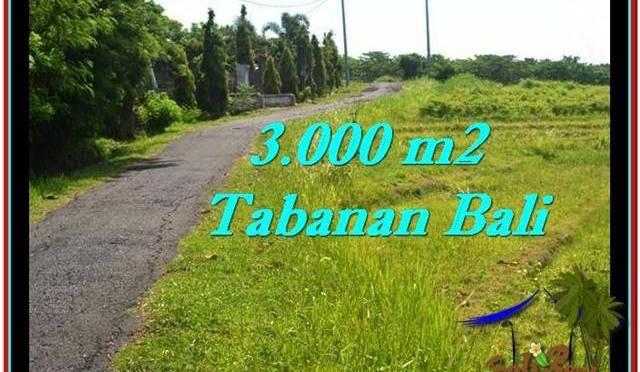 TANAH di TABANAN DIJUAL 3,000 m2 di Tabanan Selemadeg