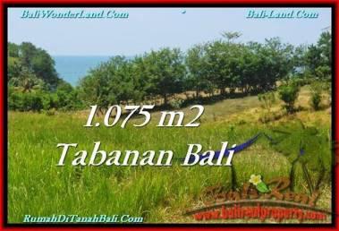 TANAH di TABANAN BALI DIJUAL MURAH 1,075 m2 di Tabanan Selemadeg