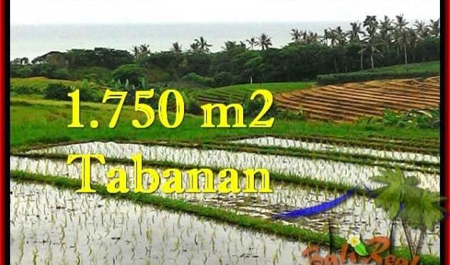 TANAH MURAH DIJUAL di TABANAN BALI 17.75 Are di Tabanan Selemadeg