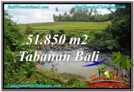 TANAH JUAL MURAH TABANAN BALI 51,850 m2 View Sawah dan Sungai