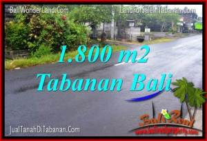 JUAL TANAH di TABANAN 1,800 m2  View sawah