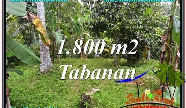 JUAL TANAH MURAH di TABANAN 18 Are di Tabanan Penebel
