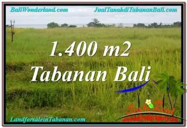 JUAL MURAH TANAH di TABANAN BALI Untuk INVESTASI TJTB309