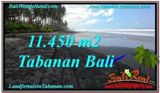 TANAH DIJUAL MURAH di TABANAN 11,450 m2 di Tabanan Kerambitan