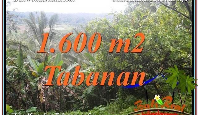 INVESTASI PROPERTY, JUAL TANAH di TABANAN BALI TJTB348