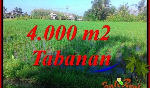 DIJUAL TANAH di TABANAN TJTB352