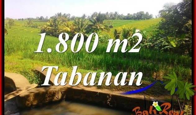 TANAH MURAH di TABANAN BALI DIJUAL TJTB338