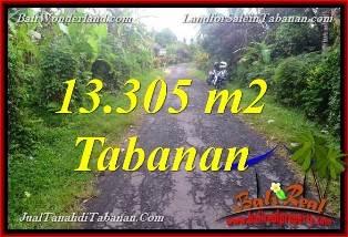 JUAL MURAH TANAH di TABANAN BALI 13,305 m2 View Kebun dan Sungai