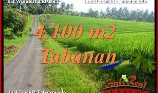 TANAH MURAH di TABANAN DIJUAL 41 Are di TABANAN SELEMADEG