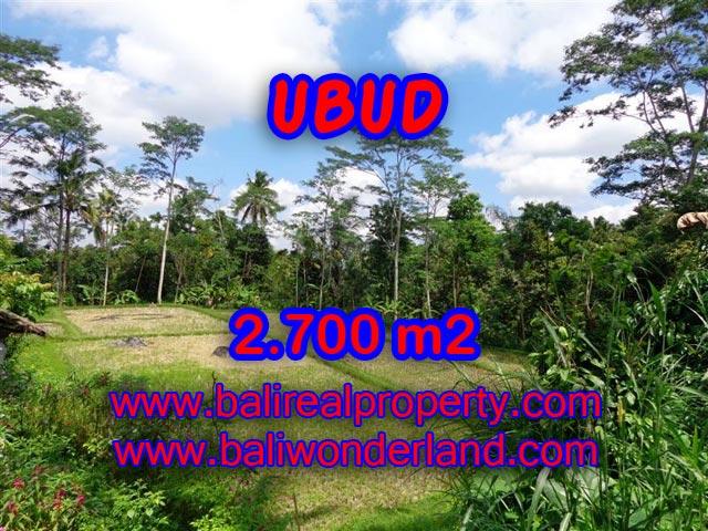 Tanah dijual di Ubud TJUB305 Kesempatan investasi Property di Bali
