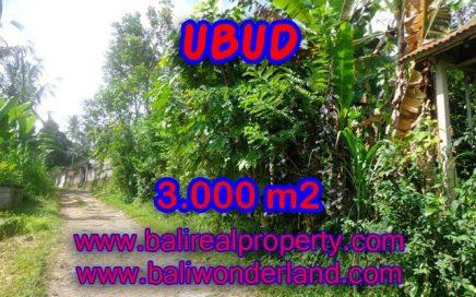 Jual tanah di Bali murah view tebing di Ubud Payangan