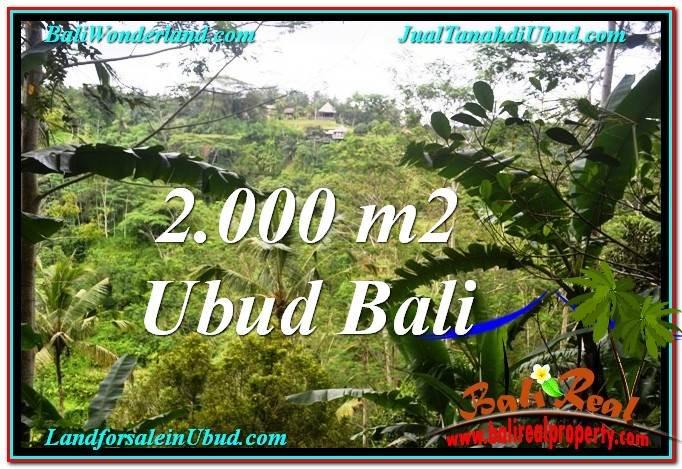 TANAH MURAH JUAL UBUD 20 Are View Tebing dan Sungai