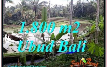 JUAL MURAH TANAH di UBUD 1,800 m2 di Ubud Tampak Siring
