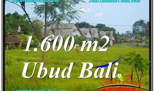 JUAL TANAH di UBUD BALI 1,600 m2 View Sawah, Link. Villa