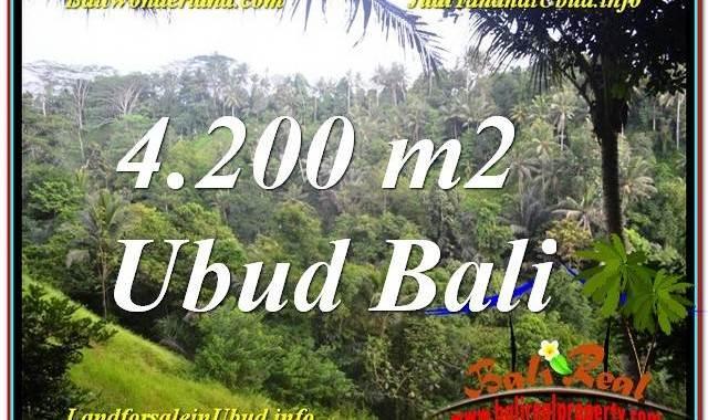 JUAL TANAH MURAH di UBUD Untuk INVESTASI TJUB639