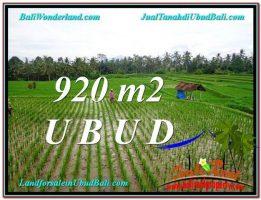 TANAH di UBUD DIJUAL MURAH 920 m2 di Ubud Payangan