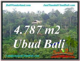 TANAH DIJUAL MURAH di UBUD Untuk INVESTASI TJUB603