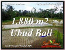 TANAH di UBUD DIJUAL MURAH Untuk INVESTASI TJUB613