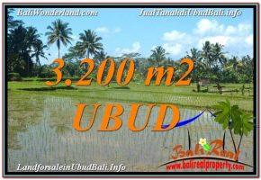 TANAH JUAL MURAH  UBUD 3,200 m2  View Sawah dan Gunung Batur