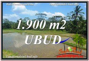 TANAH di UBUD BALI DIJUAL MURAH 1,900 m2 di Ubud Payangan