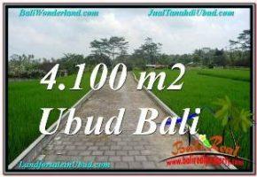 JUAL MURAH TANAH di UBUD BALI Untuk INVESTASI TJUB676