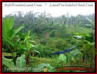 JUAL TANAH di UBUD BALI 600 m2 di Ubud Tampak Siring