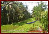 TANAH MURAH di UBUD 38 Are di Sentral Ubud
