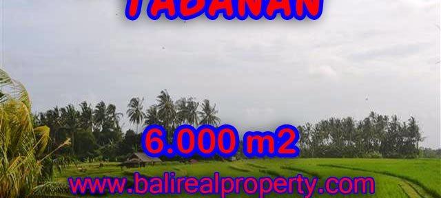 DIJUAL TANAH DI TABANAN RP 360.000 / M2 - TJTB093 - INVESTASI PROPERTY DI BALI