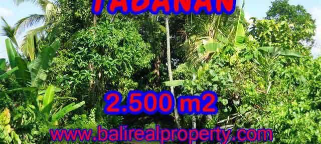 DIJUAL TANAH MURAH DI TABANAN TJTB122 - KESEMPATAN INVESTASI PROPERTY DI BALI