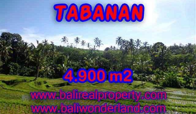 INVESTASI PROPERTI DI BALI - DIJUAL TANAH DI TABANAN BALI CUMA RP 420.000 / M2