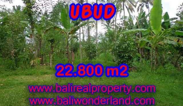 DIJUAL TANAH DI UBUD RP 750.000 / M2 - TJUB409 - INVESTASI PROPERTY DI BALI