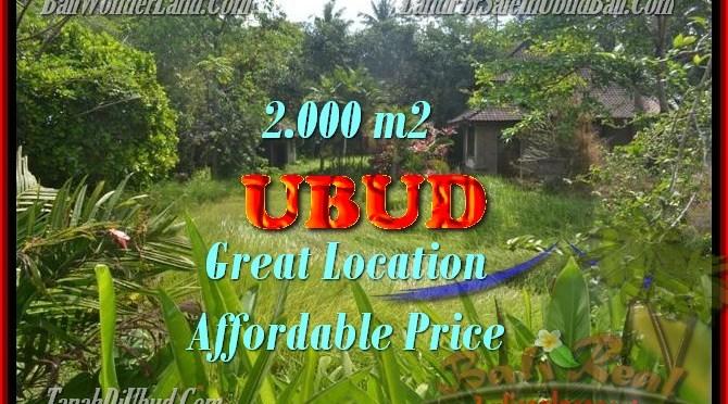 DIJUAL MURAH TANAH DI UBUD TJUB429 - INVESTASI PROPERTY DI BALI