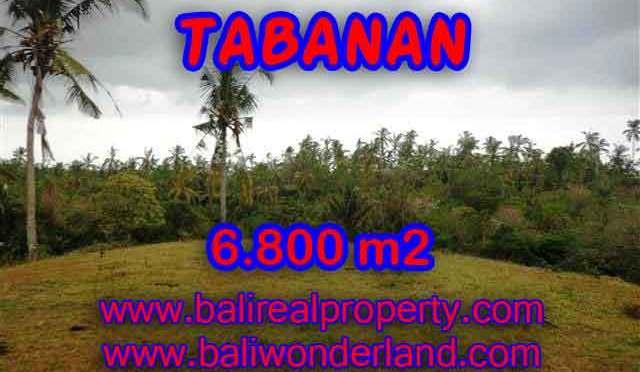TANAH MURAH DI TABANAN DIJUAL RP 320.000 / M2 - TJTB140
