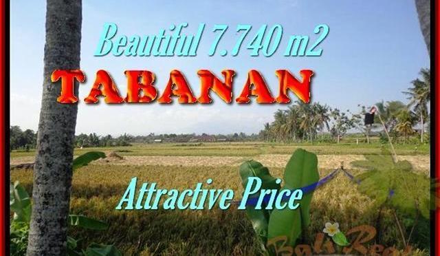 DIJUAL TANAH MURAH di TABANAN 7.740 m2 di Tabanan kota