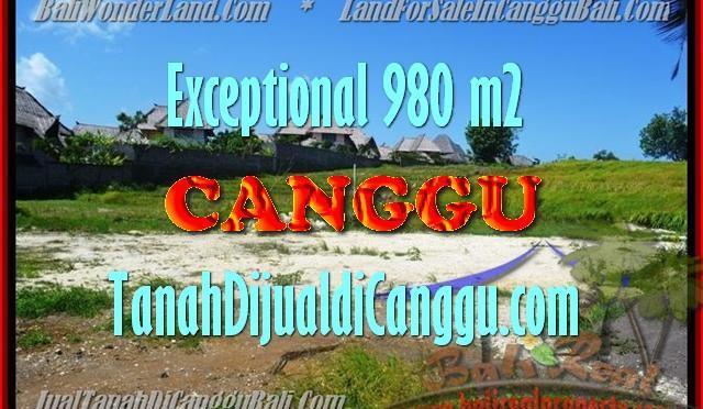TANAH MURAH di CANGGU BALI DIJUAL 980 m2 di Canggu Pererenan